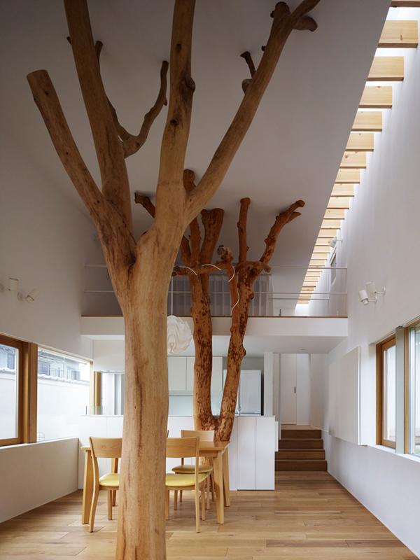 Деревья в интерьере